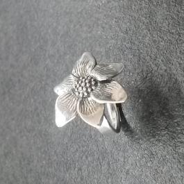 Stříbrný prsten AG0115